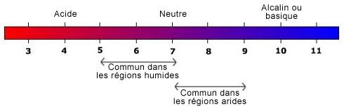 Le ph du sol - Comment mesurer le ph ...